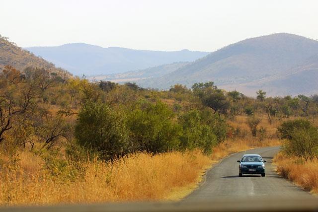 Inside Pilanesberg