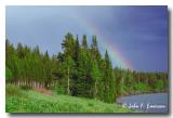 Rainbow near Jackson Lake