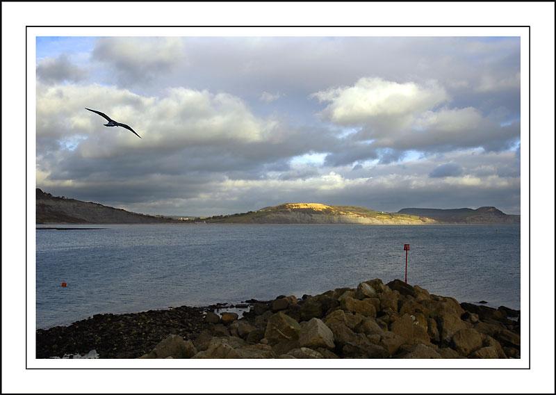 Across from the Cobb, Lyme Regis