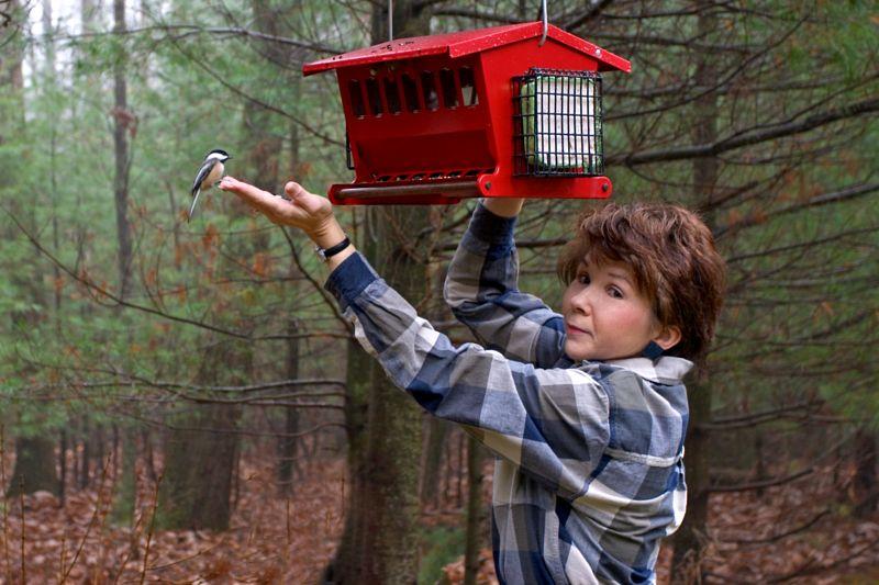 Feeding the Chickadees