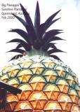 Big Pineapple in Queensland Australia