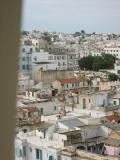 View of Tunis: white buildings