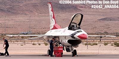 USAF Thunderbird #4 at the 2004 Aviation Nation Air Show stock photo #2442