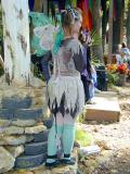 Visiting Fairy