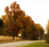 Dalmeny country road