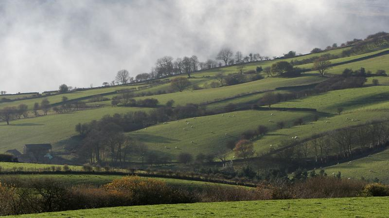 Fields in North Yorkshire