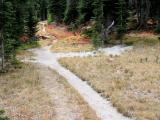 Bear Creek Meadow Trail