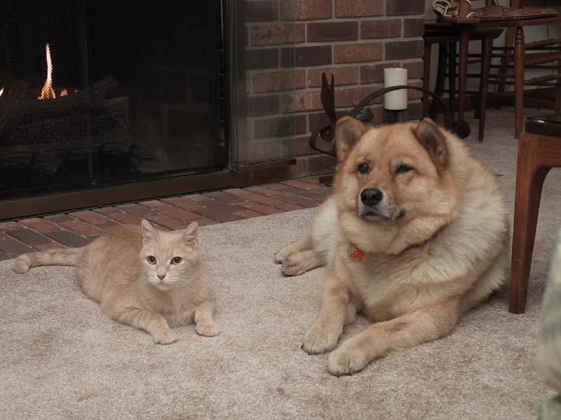 Tony and Sandy, Christmas 2002