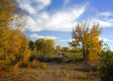 south_platte_valley