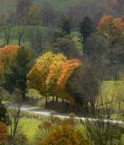 Virginia Fall