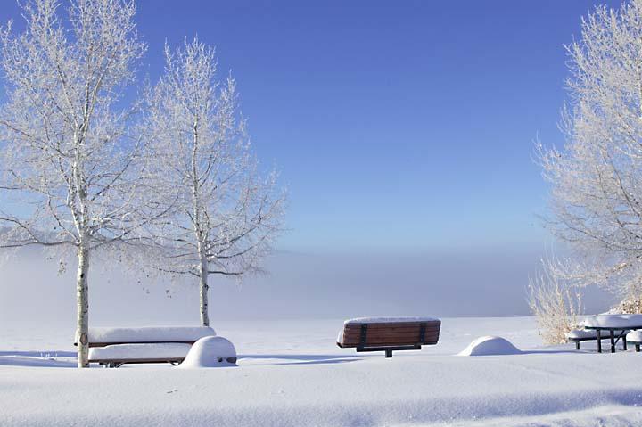 Big Bear Snow 10