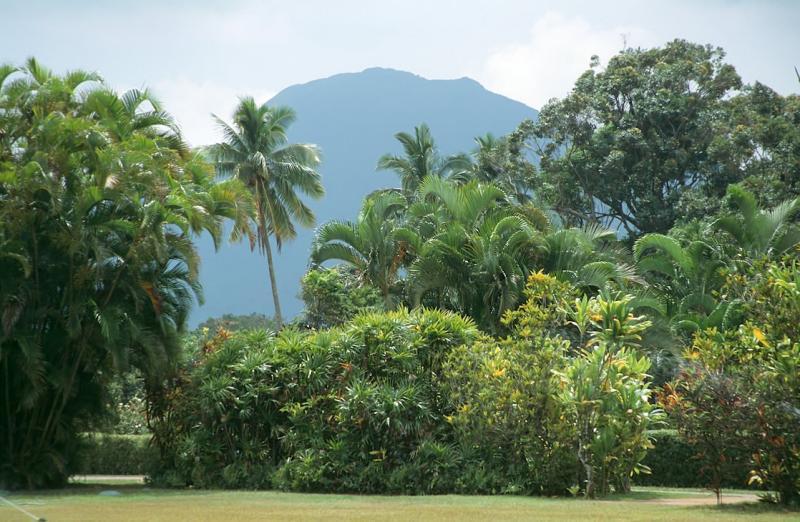 05-04-Beautiful Gardens of Kilohana