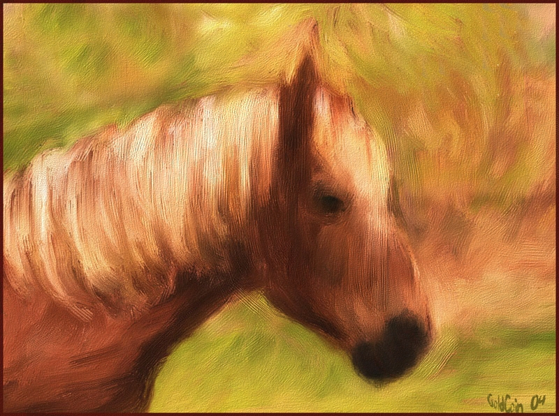 Handdrawn..Painted in Painter 8..