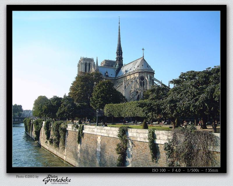 Notre Dame (seen from behind)