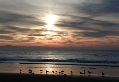 Early beachgoers