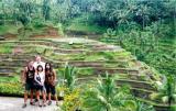 02 Bali - Barry, Andrea ,Sig, Maggie