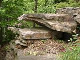 Mountain laurel and rocks
