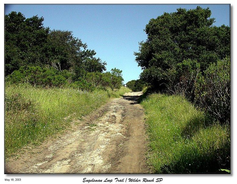 On the Englesman loop trail