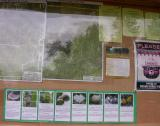 autumn fungi display at Cedar Grove trail kiosk