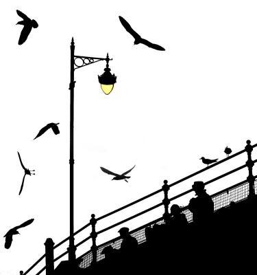 The Birds The Birds