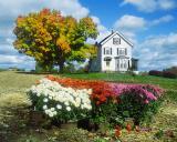 Autumn harvest 2002