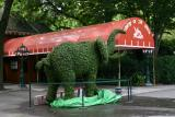 Elephant Topiary for Republican Conventioneers