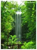 Waterfall; standing afar