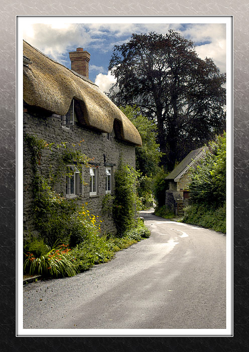 Looking down the hill, Melbury Osmond, Dorset