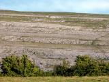 The Burren (Co. Clare)