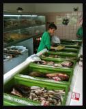Chti poissons de la baltiquemiam miam