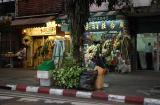 Flower shop ect...