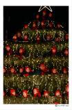 Kinderchor im Weihnachtsbaum