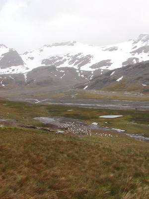 Glaciers behind Stromness