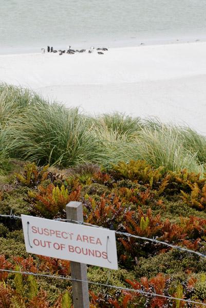 Gypsy Cove minefield sign