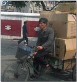 Bicycle power, Fuzhou