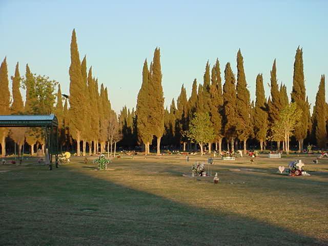 158. cemetery sunset . . . . .