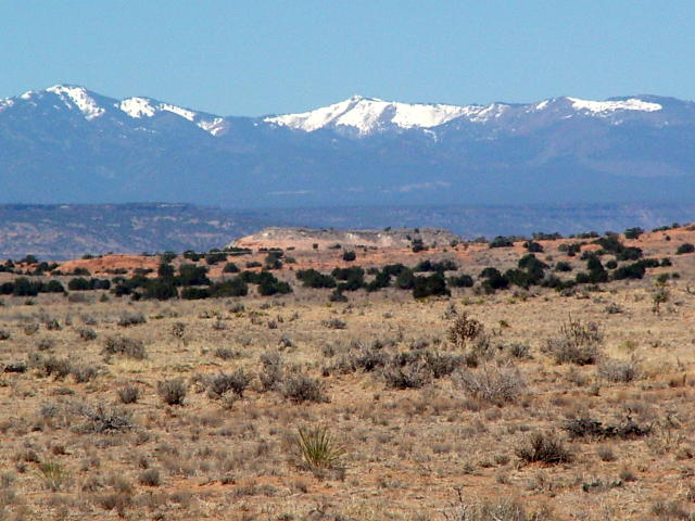 New Mexico Roadway4sm.jpg