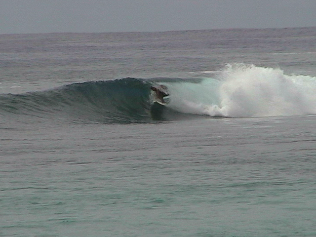 wave of the day...jon taba...HA flight attendant.....kia orana!