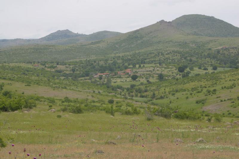 Macedonia 007