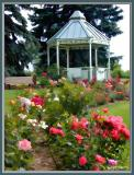 Gazebo in the Rose Garden