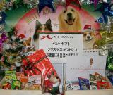 Animal Xmas (Canon Holiday Challenge)