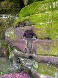 Mossy Sandstone Rock