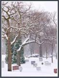 March 12 - Dead Silence