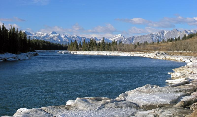 Spring on the Bow River