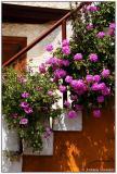 Crete Hania