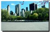 Central Park_564852.jpg