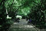 Central Park_0427.jpg
