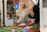 Fes Camel Shop