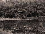 Reservoir Reflection