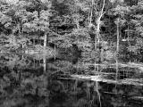 Ghost Lake - II